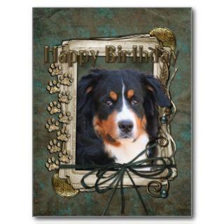Happy Birthday   Stone Paws   Bernese Mountain Dog Postcards