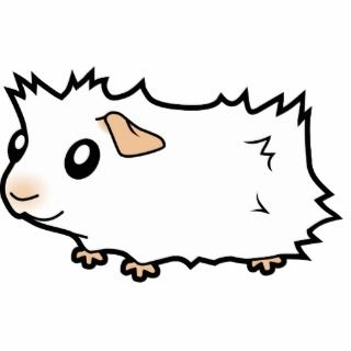 Cartoon Guinea Pig (white) Cut Outs
