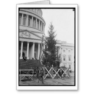 Washington DC Christmas Cards