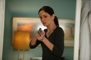 Prison Break   Die komplette Season 4 [6 DVDs] Wentworth