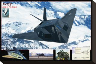 Airplane F 117 Nighthawk Stretched Canvas Print