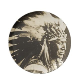 Vintage Sioux Chief White Swan Party Plate