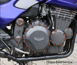 Triumph Tiger 900 / T400   Motorschrauben V2A Schrauben