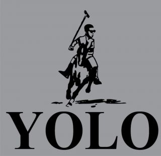 YOLO Drake Drizzy Weezy Lil Wayne YMCMB You Only Live Once OVO Funny T
