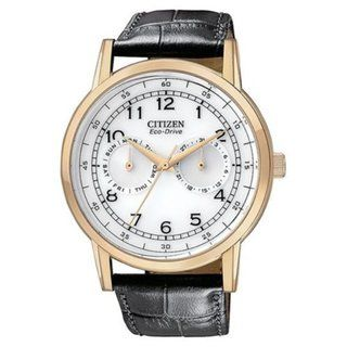 CItizen Mens Eco Drive Multifunction Black Leather Strap Watch
