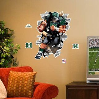 Hawaii Warriors 3 Football Player Wall Crasher Sports