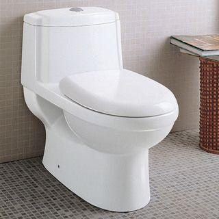 Ariel Platinum Anna Dual Flush toilet