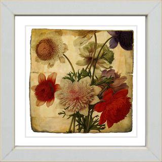 Studio Works Modern Vintage Botanical #20a Framed Print