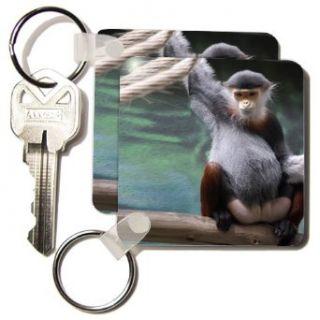 Douc Langur Monkey   Set Of 2 Key Chains Clothing