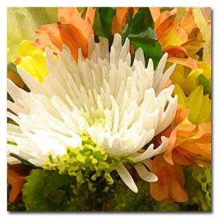 Amy Vangsgard Spring Flower Burst Canvas Art