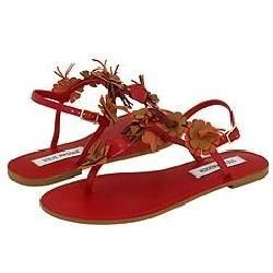Steve Madden Clustter Red Multi Sandals
