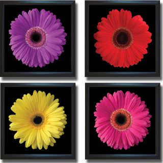 Jim Christensen Gerbera Daisy Flower Framed 4 piece Canvas Art Set