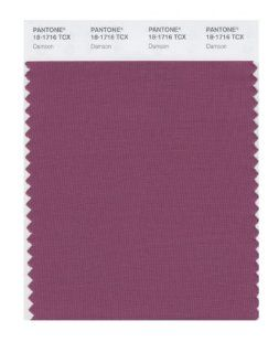 PANTONE SMART 18 1716X Color Swatch Card, Damson