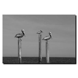 Cary Hahn Pelicans at Bay Canvas Art Today $15.49 3.0 (2 reviews