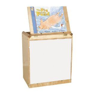 Big Book Easel/Storage Toys & Games