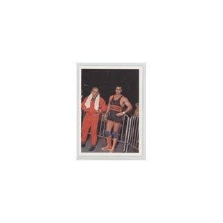 Mike Rotunda (Trading Card) 1988 Wonderama NWA #243 Collectibles