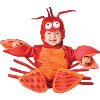 Baby Halloween Costumes   The Original Lobster Costume