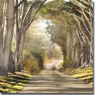 Harold Davis The Destination Canvas Art