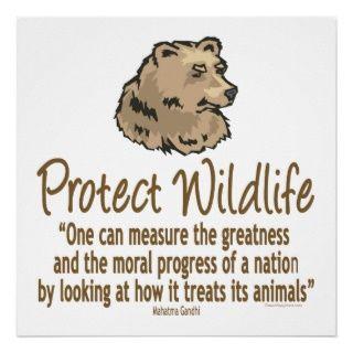Schützen Sie wild lebende Tiere, Ursus, Bären Posterdrucke von